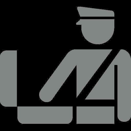 Customs Emoji